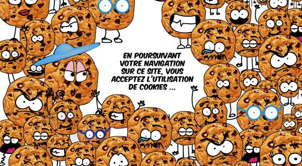 quelle reglementation pour les cookies