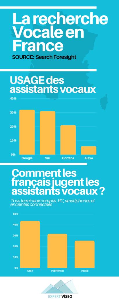 La recherche vocale en France - Référencement naturel